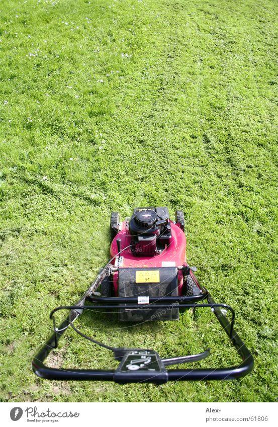 greif zu und gib GAS!!! Sommer Wiese Gras Garten Arbeit & Erwerbstätigkeit rosa Ordnung Sauberkeit Rasen Gas Motor Homosexualität Hebel Rasenmäher Gartengeräte