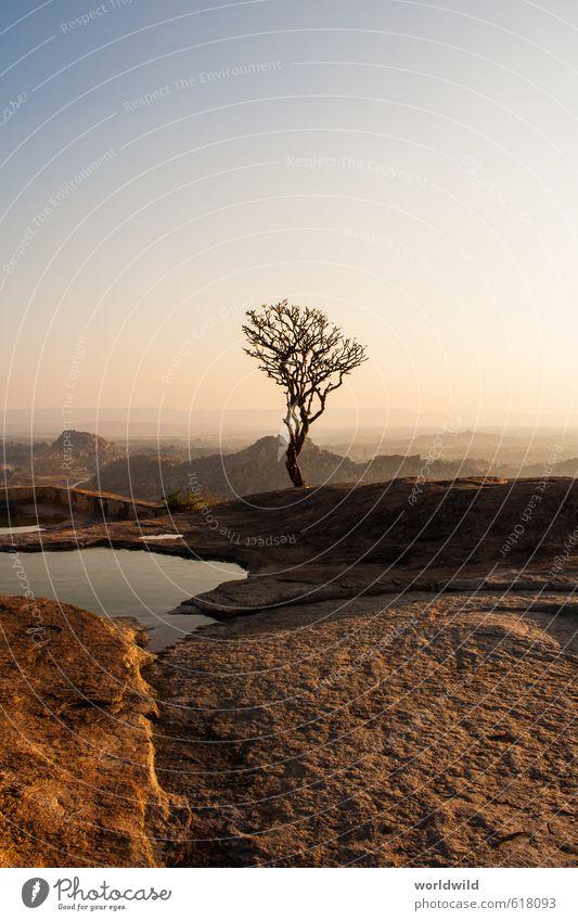 alone Erholung ruhig Freiheit Natur Landschaft Erde Sonnenaufgang Sonnenuntergang Pflanze Baum Hügel Felsen Stein entdecken Ferien & Urlaub & Reisen wandern