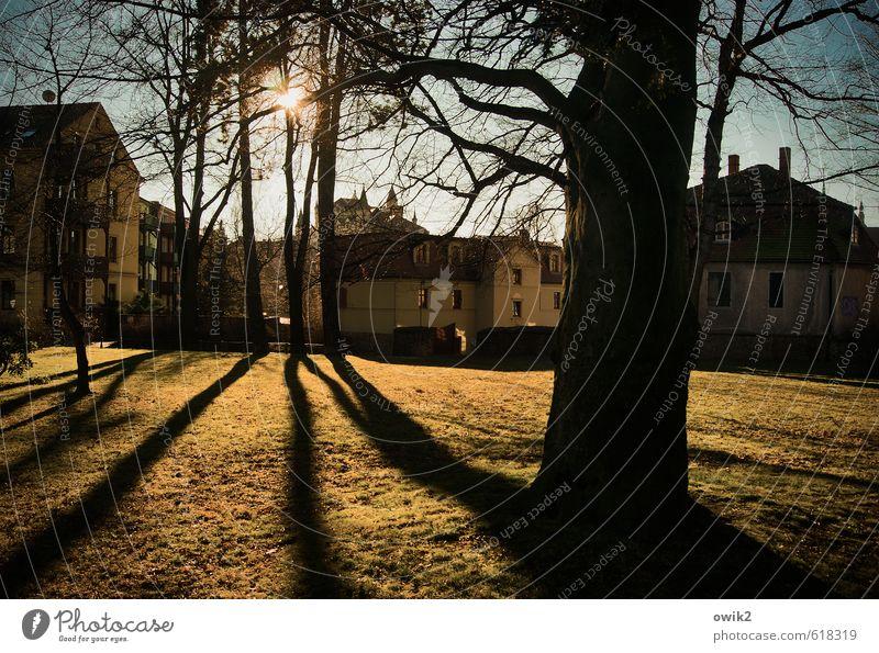 Parkplatz Natur Stadt Pflanze Baum Landschaft Umwelt Gras Gebäude hell Horizont Deutschland Wetter Idylle leuchten Klima
