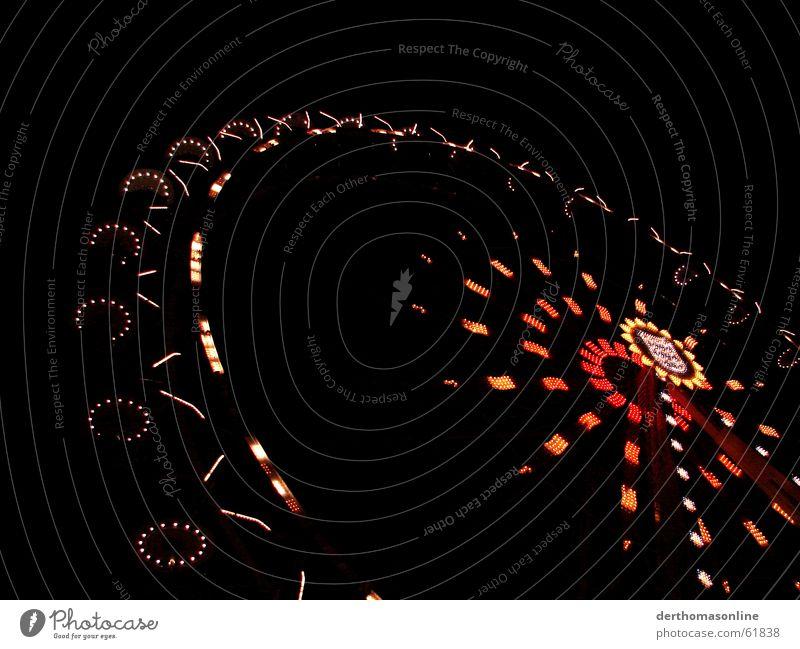 Riesenrad Freude dunkel Herbst Gefühle oben Bewegung hell Feste & Feiern Wohnung Freizeit & Hobby Wildtier hoch Geschwindigkeit Aktion Kreis rund