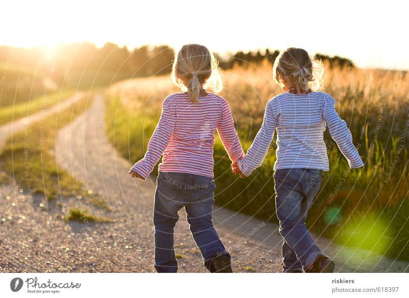 back to summer feminin Kind Mädchen Geschwister Kindheit 2 Mensch 3-8 Jahre Umwelt Natur Landschaft Sommer Schönes Wetter Feld entdecken Erholung festhalten