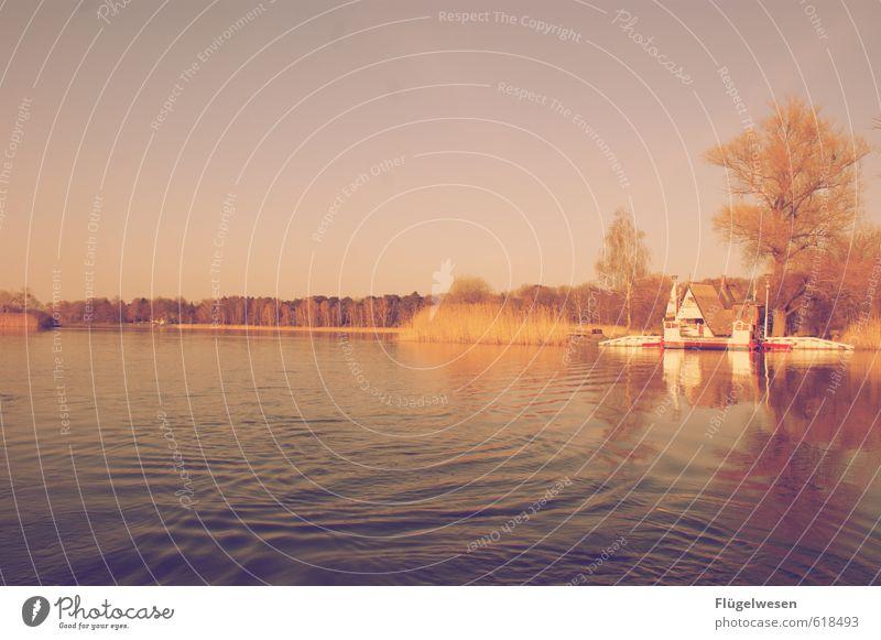 Heimat Natur Ferien & Urlaub & Reisen Pflanze Erholung Landschaft ruhig Tier Ferne Umwelt Freiheit Schwimmen & Baden See Wetter Wohnung Tourismus Klima