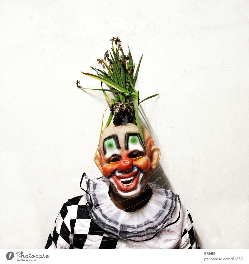 Clownerie Freak Pflanze kariert Porträt spontan lol gott im himmel kosötum ich natürlich Maske Mensch selbstpotrait witzisch Karneval