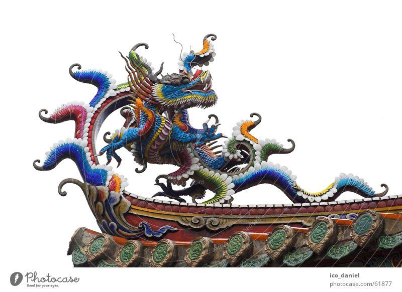 Drachen am Konfuzius Tempel in Taipeh II Ferien & Urlaub & Reisen alt ruhig Architektur Religion & Glaube Gebäude Holz Kunst Dekoration & Verzierung Dach