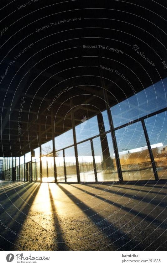 echt mies #1 Sonne Fenster Berlin Kunst Glas modern Perspektive neu Klarheit Stahl Museum blenden Sehenswürdigkeit Bildausschnitt Strebe