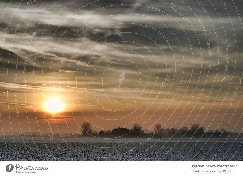 Wintersonne Natur Landschaft Erde Himmel Wolken Sonne Sonnenaufgang Sonnenuntergang Sonnenlicht Eis Frost Feld Dorf Unendlichkeit kalt gelb gold grau Farbfoto