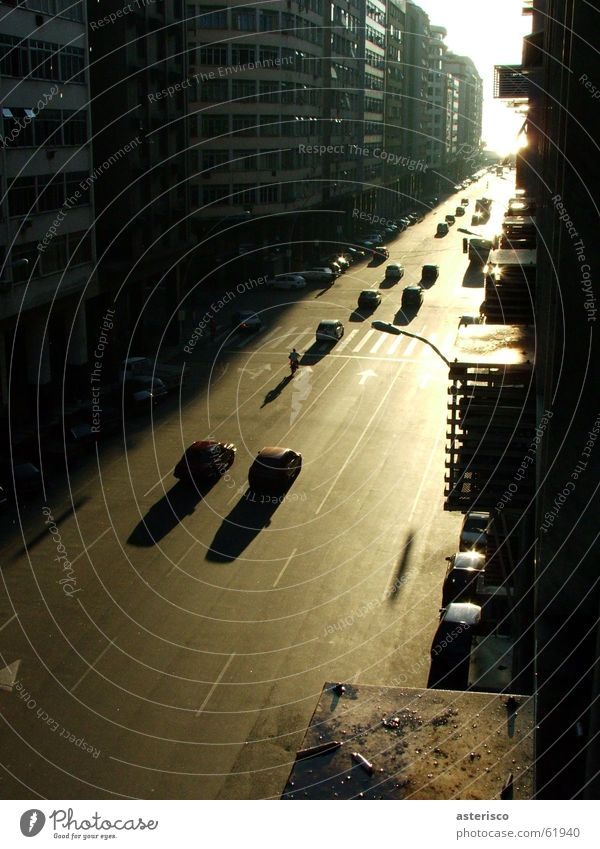 afternoon Stadt Brasilien Asphalt Rio de Janeiro Licht Durchgang cars road street building Bus architecture Signal pedestrian transit shade window light sun