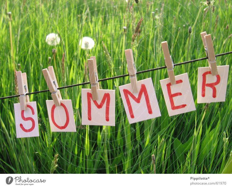 Sommer schön grün Sommer Freude Wiese Gras Wärme klein frei Seil Fröhlichkeit Rasen Schriftzeichen Physik Buchstaben heiß