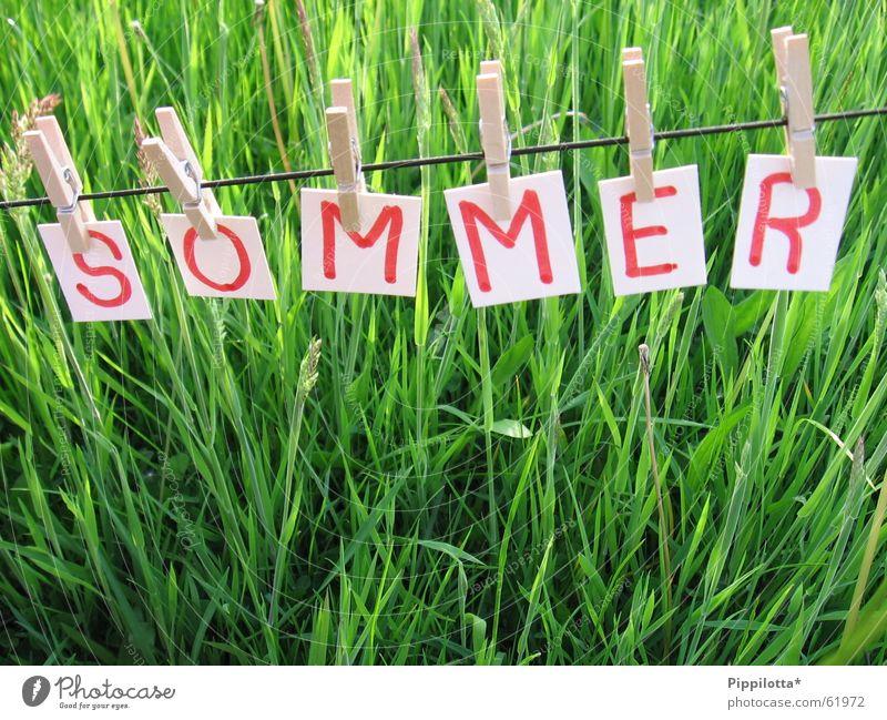 Sommer ll Natur schön grün Freude Erholung Wiese Gras Wärme klein frei Seil Fröhlichkeit Rasen Schriftzeichen Physik