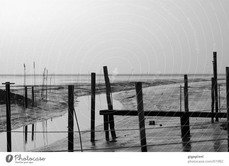 Am grauen Strand, am grauen Meer ... Wasser Ferne Horizont Wattenmeer Ebbe