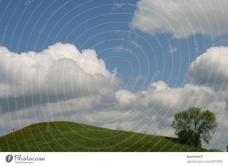 Wolken wie Watte Himmel Baum grün Wiese Berge u. Gebirge Frühling Hügel himmelblau