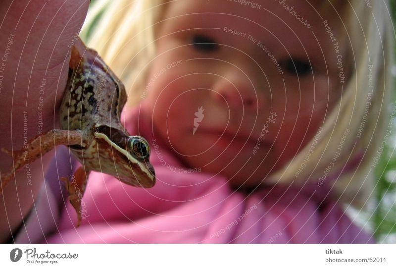 Froschkönig - behalten wollen Kind Natur Mädchen Auge Tier Spielen festhalten entdecken Frosch Märchen staunen Prinzessin begreifen Froschkönig Kinderaugen