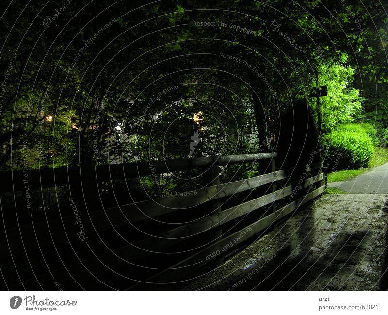 the ghost Nacht dunkel Park Geister u. Gespenster Brücke Bewegung night dark bridge