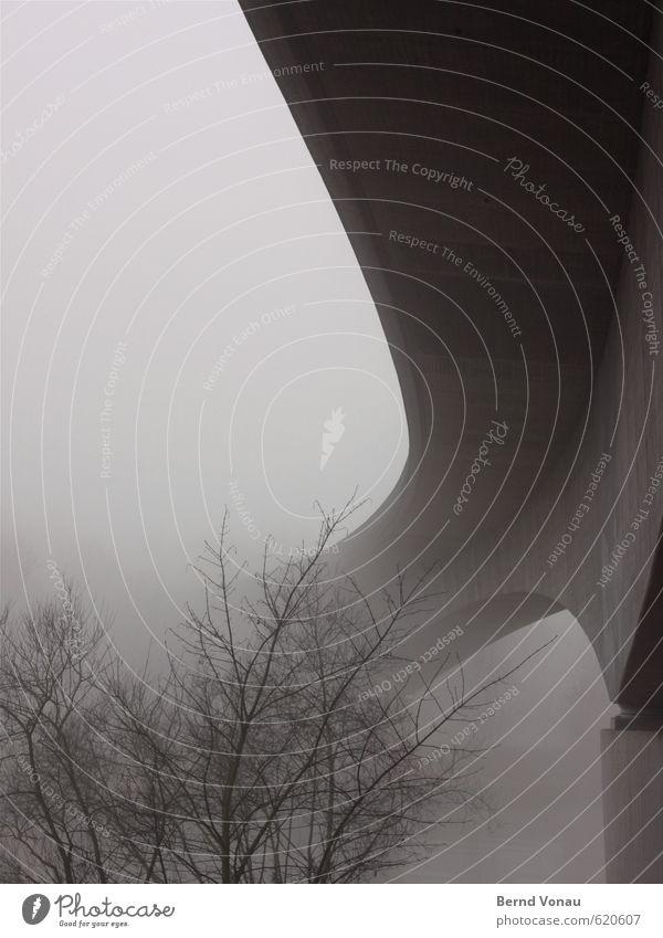 Letzte Ausfahrt elegant Winter Pflanze Nebel Baum Brücke Verkehr Verkehrswege Straße kalt oben positiv trist unten braun grau schwarz steil richtungweisend trüb