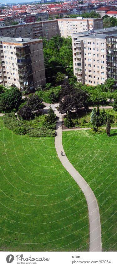 16 Stock Hochhaus Stadt Berlin Wege & Pfade Park Vogelperspektive Plattenbau grün Baum hoch Mischung Einsamkeit Aussicht