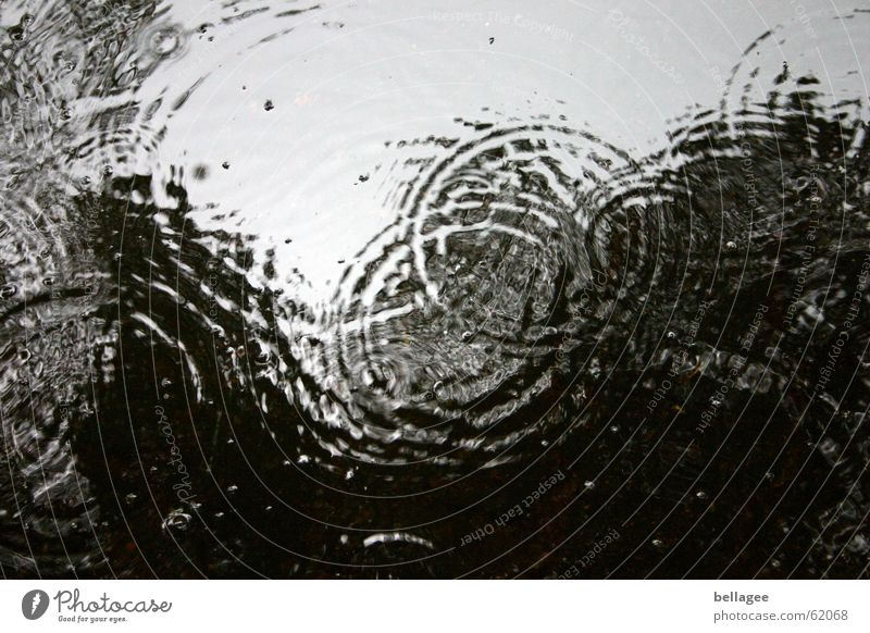 sauwetter dunkel Herbst Bewegung grau See Regen Wellen Wetter Wassertropfen nass Kreis trist blasen Ekel Teich