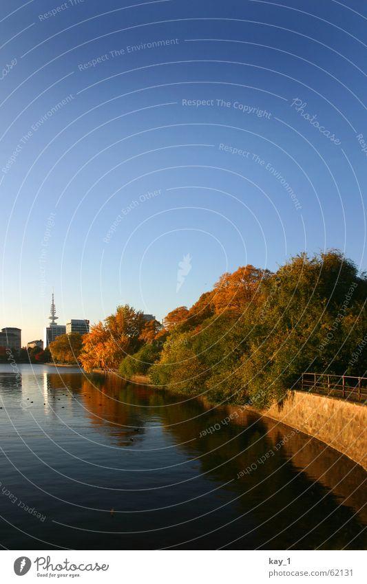 Binnenalster blau Wasser Stadt Baum Herbst See Schönes Wetter Hamburg Wolkenloser Himmel Stadtzentrum Sightseeing herbstlich Blauer Himmel Herbstfärbung Alster