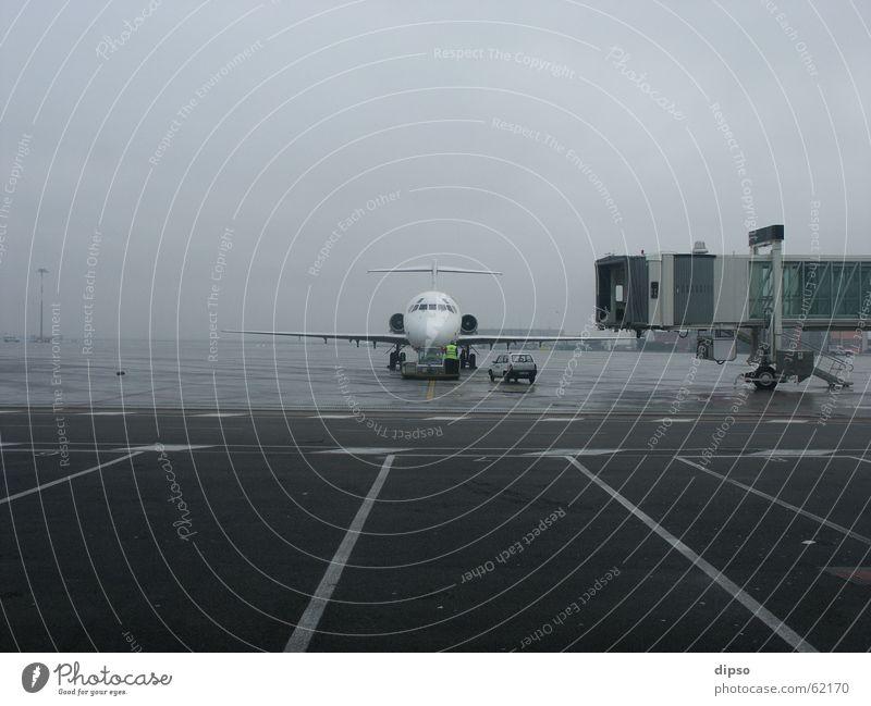 LH 4122 hat leider ca. 30min. Verspätung ... Flugzeug Venedig Vorfeld Nebel Ferien & Urlaub & Reisen Flughafen fliegen Arbeit & Erwerbstätigkeit Wetter
