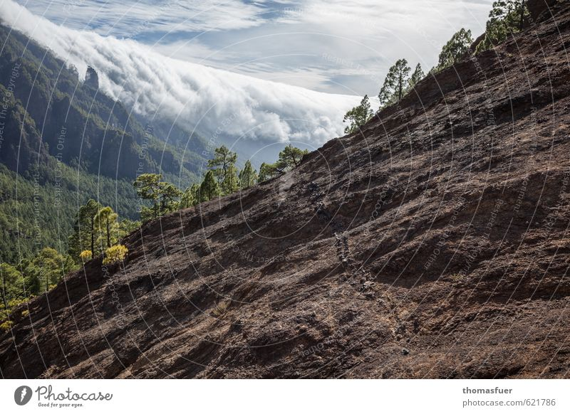 Trail Himmel Ferien & Urlaub & Reisen Sommer Sonne Baum Landschaft Wolken Ferne Berge u. Gebirge Wege & Pfade Freiheit Sand außergewöhnlich Felsen Horizont Luft