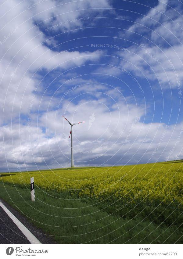 Der Frühling ruft Wolken Raps Feld gelb rot weiß Sehnsucht Jahreszeiten Reifezeit Elektrizität Sturm Leitpfosten Sicherheit Gras grün weich Wachstum
