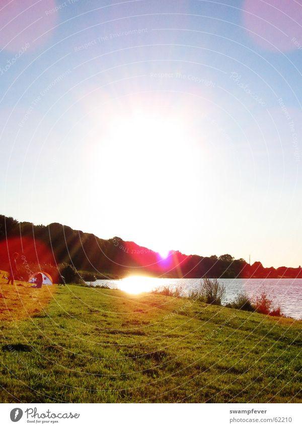 Die Sonne scheint pink. Mensch Natur Wasser Himmel Baum Sonne blau Sommer Strand Wald Wiese Spielen Gras Frühling See Park
