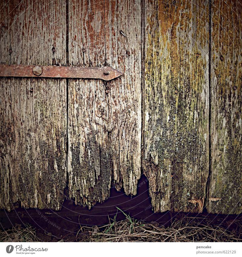 zerfallsdatum überschritten Natur Urelemente Erde Gras Hütte Tür Zeichen Armut authentisch dreckig einfach hässlich einzigartig kaputt Originalität wild