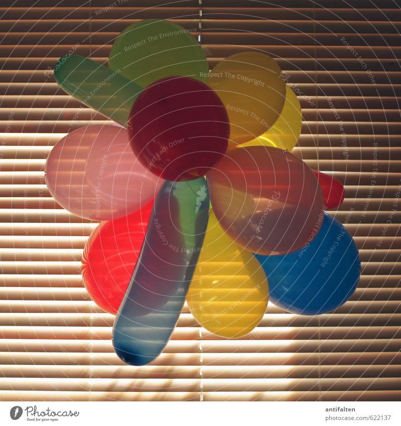 Hausparty Freude Fenster Feste & Feiern Party Wohnung Raum Häusliches Leben Dekoration & Verzierung Geburtstag Fröhlichkeit Lebensfreude Streifen rund