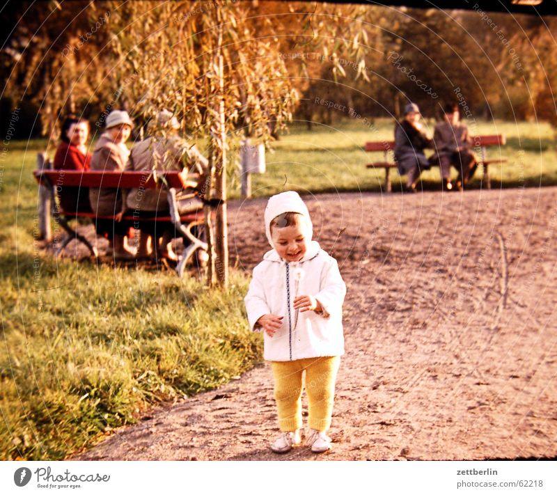 Ganz früher III Kind Kleinkind Löwenzahn Senior Parkbank Sechziger Jahre Junge altes foto