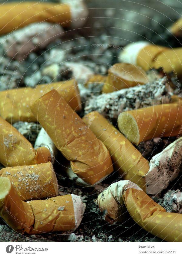 [ topografie ] Feste & Feiern Rauchen Zigarette Brandasche Filter Zigarre Aschenbecher Zigarettenstummel