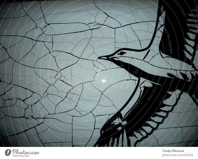 i am a bird now Ferien & Urlaub & Reisen Freiheit Tier Vogel Flügel fliegen Selbstständigkeit Hintergrundbild Oberfläche Etikett Riss durch die luft sausen