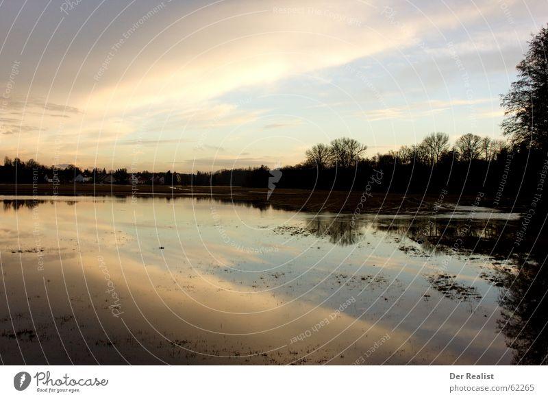Surreal See Wolken Baum Reflexion & Spiegelung Sonnenuntergang schön Gefühle Denken Licht Blatt Meer Europa Spiegelbild Wasseroberfläche grün Abend nass