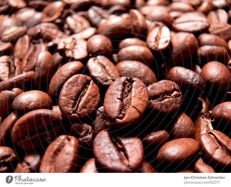 Ka-Bo Dorf Bohnen Café lecker Tasse Makroaufnahme zerkleinern Gastronomie heiß Physik Afrika kaffebohnen milchkaffe zuücker hot Wärme baun