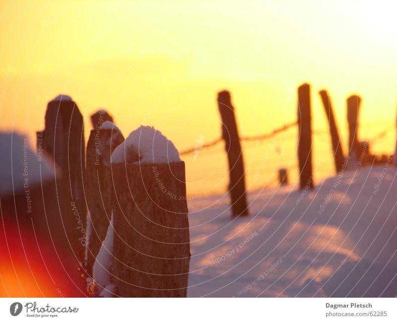 sonnenuntergang Schnee Stimmung Zaun Sonne Wintersonne