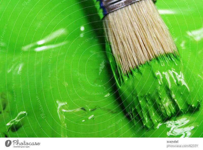 es grünt so grün... grün Farbe streichen zeichnen Pinsel Lack