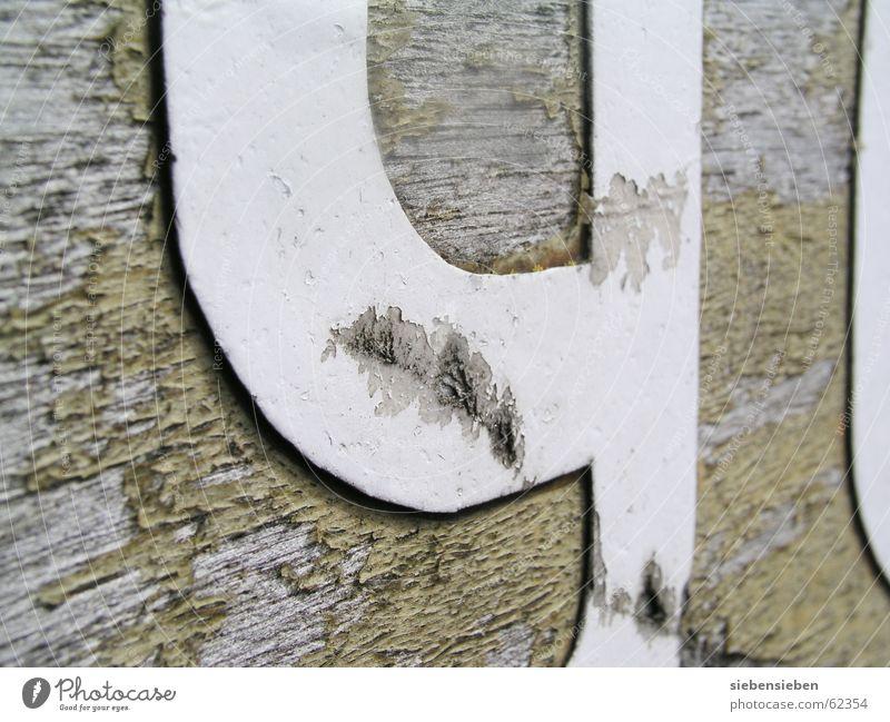 Die Neun 9 Ziffern & Zahlen Holz Wasserfahrzeug trocken antik alt Altertum Schiffsrumpf Altmaterial Sanieren Makroaufnahme Nahaufnahme grundzahl verfallen