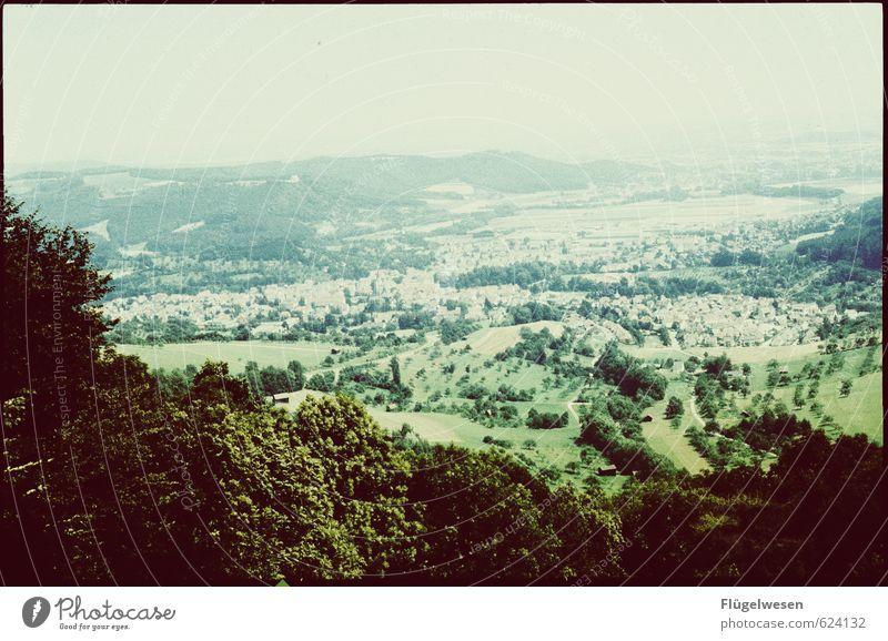 998 Ferien & Urlaub & Reisen Tourismus Ausflug Abenteuer Ferne Freiheit Städtereise Sommer Berge u. Gebirge wandern Baum Blume Gras Sträucher Moos Garten Park