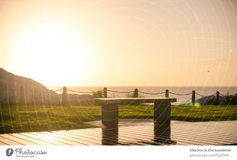 schatz, setzen wir uns da hin? Natur Ferien & Urlaub & Reisen Sommer Meer Einsamkeit Erholung Landschaft ruhig Strand Ferne Umwelt Freiheit Ausflug Spaziergang