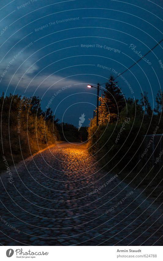 Nachts in Brandenburg Himmel Natur Ferien & Urlaub & Reisen blau alt Sommer Baum ruhig Wolken dunkel Straße Stimmung orange Sträucher Schönes Wetter Kabel