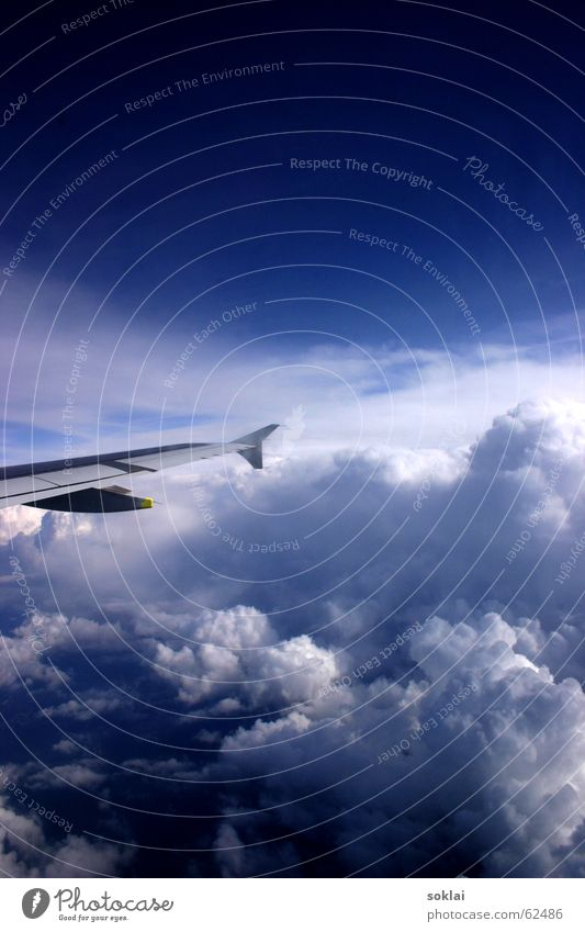 alpäään! Flugzeug Wolken Österreich Schweiz Wien Alpen Himmel Zürich