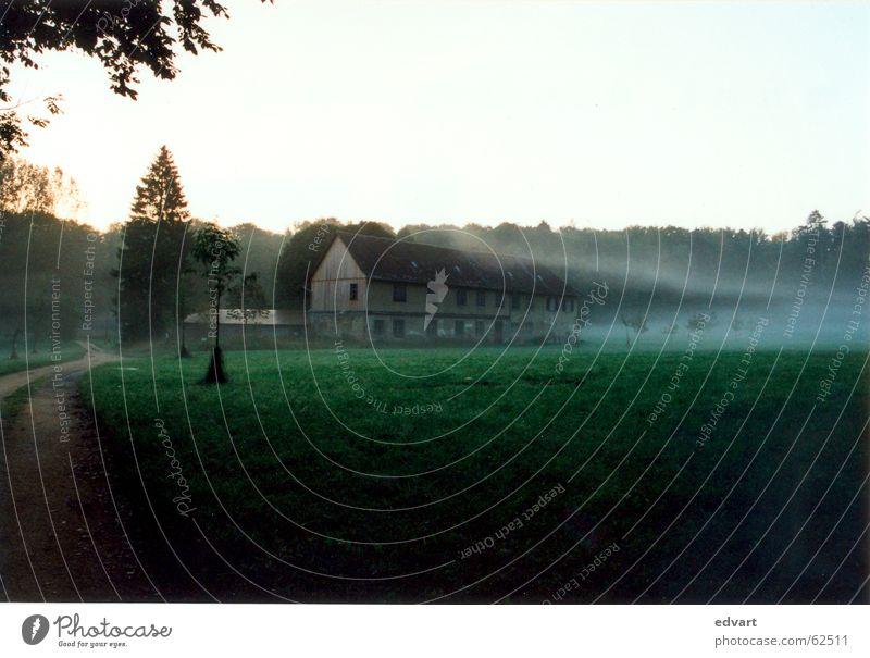 scheune im nebel Haus Wald kalt Wege & Pfade Nebel