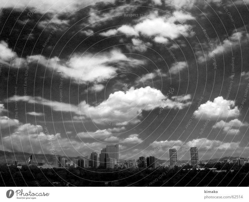 Mexico City Stadt Himmel Wolken Gebäude Baum Mexiko sky black and withe clouds building trees immensity schwarzes und withe Unendlichkeit kimako