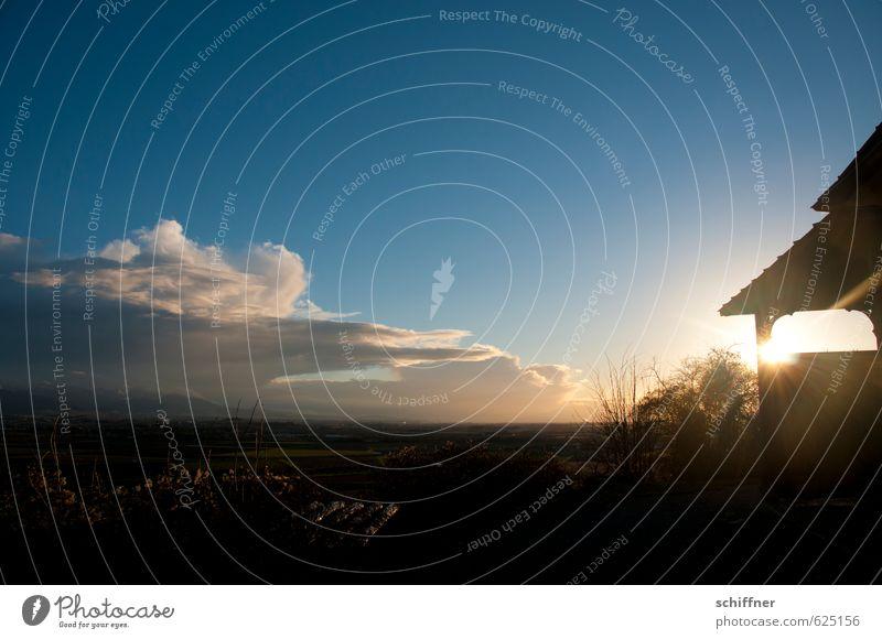 Auch der Schwarzwald wird wieder hell Umwelt Landschaft Sonne Sonnenaufgang Sonnenuntergang Sonnenlicht Winter Klimawandel Schönes Wetter schlechtes Wetter