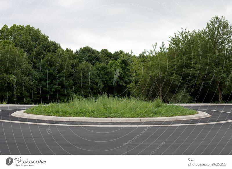 500 - round and round Umwelt Natur Landschaft Baum Gras Verkehr Verkehrswege Straßenverkehr Autofahren Wege & Pfade trist geduldig ruhig Langeweile Sehnsucht