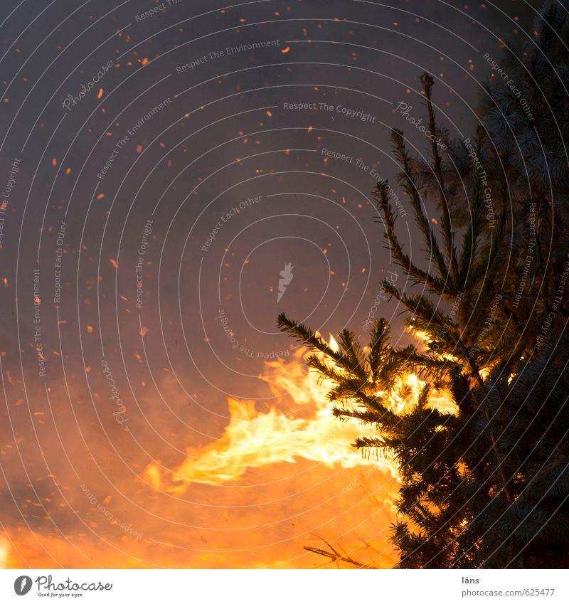 der Geist der vergangenen Weihnacht leuchten Brand Veranstaltung Tanne brennen Funken