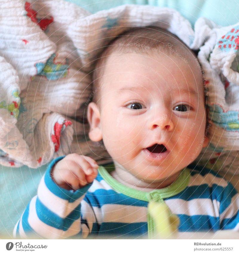 Baby guckt in die Kamera Kopf Mund 1 Mensch 0-12 Monate liegen sprechen Fröhlichkeit klein Kind schön strampeln lustig Farbfoto Innenaufnahme Tag Porträt