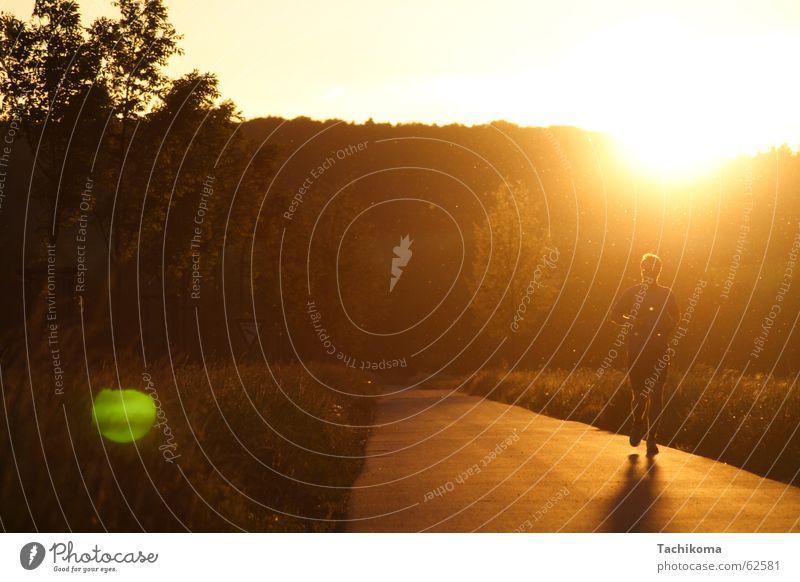 Jogging til Sunset Mann Natur Himmel Baum Sonne Sommer Freude Einsamkeit Sport Wiese Freiheit Wege & Pfade Wärme Landschaft orange laufen