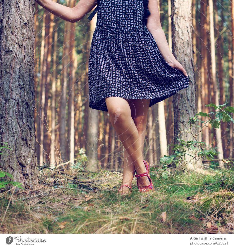 Krautstampfer Mensch feminin Frau Erwachsene Beine 1 30-45 Jahre mehrfarbig leicht Kleid Sommerkleid sommerlich Wald Spielen Tanzen Bewegung Froschperspektive