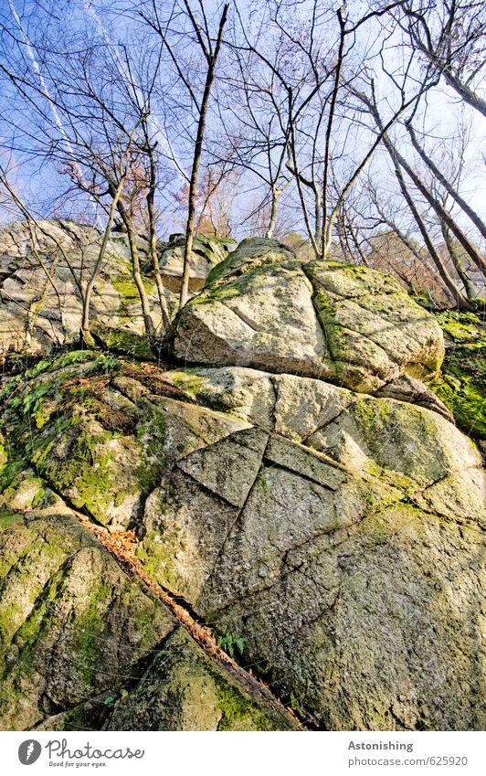 die Felswand Umwelt Natur Landschaft Pflanze Luft Himmel Wolken Herbst Wetter Schönes Wetter Baum Moos Blatt Wald Felsen Stein stehen groß hoch blau grau grün