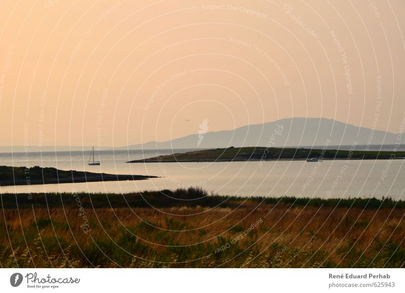 Morgendämmerung am Meer Himmel Natur Ferien & Urlaub & Reisen Wasser Sommer Sonne Landschaft Strand Umwelt Stein Sand Horizont Luft Wetter Erde