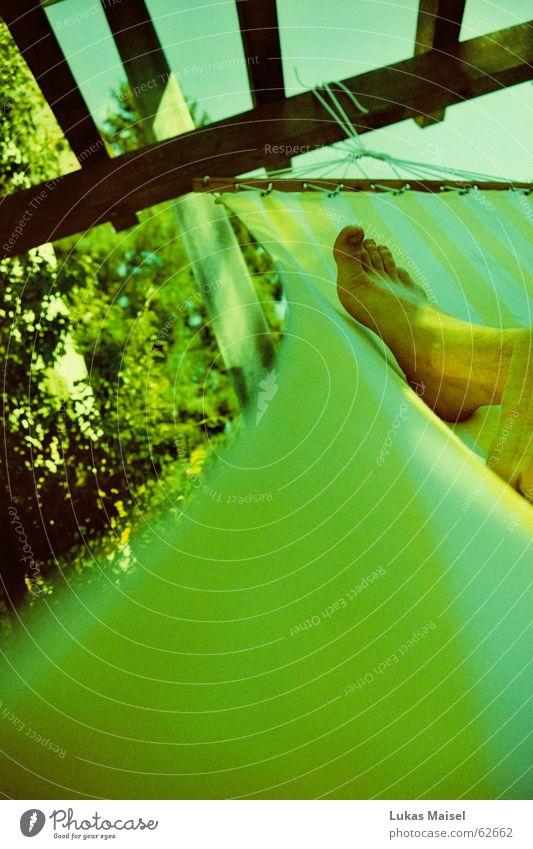 *süss Hängematte gemütlich bequem ruhig Sommer heiß Physik Sonnenstrahlen grün Frieden Ferien & Urlaub & Reisen faulenzen Zeit Erholung Fuß Wärme Himmel